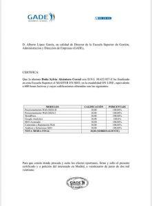 NOTAS MASTER SEO AVANZADO
